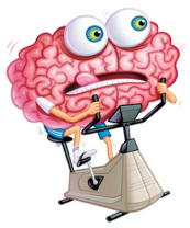 Brain-on-a-bike-exercise